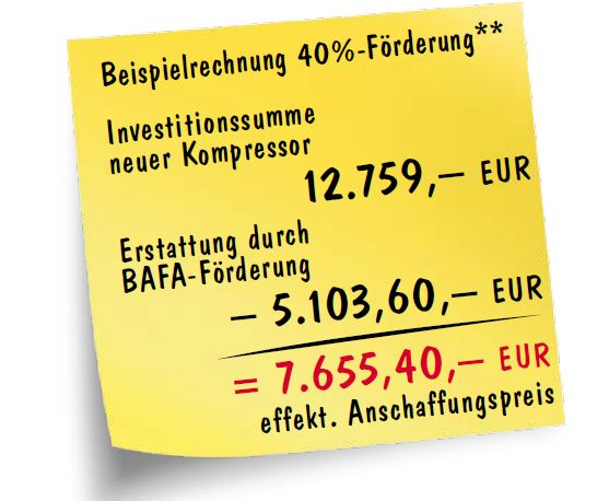 Beispielrechnung BAFA-Förderung